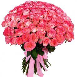 101 роза джамилия фото букета