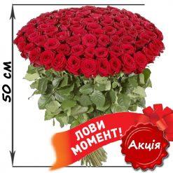 101 красная роза 50 см акционный товар