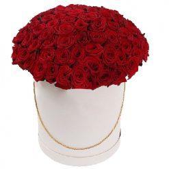 101 красная роза в шляпной коробочке фото товара