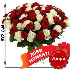 101 красная и белая роза 50 см акционный товар