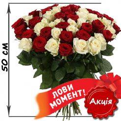 51 красная и белая роза 50 см акция
