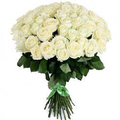 51 белая роза фото товара